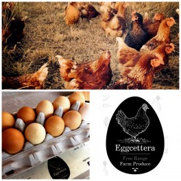 Eggcettera Farm Free range eggs