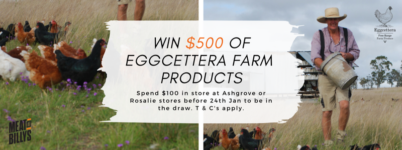 Eggcettera $500 competition_blog