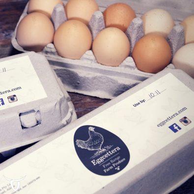 Eggcettera eggs