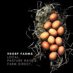 9DORF Farms pastured eggs